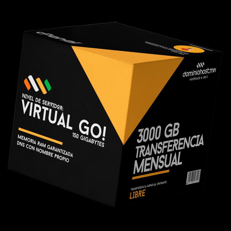 VirtualGo